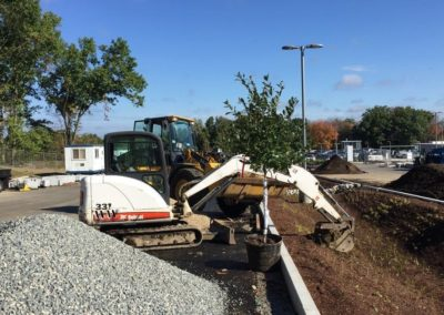 021-commercial-landscaping-boston