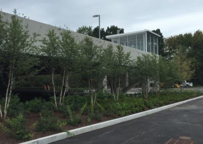 024-commercial-landscaping-boston