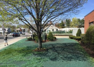 025-commercial-landscaping-boston