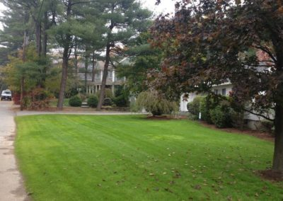 028-commercial-landscaping-boston