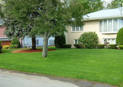 Residential Landscaping Photos