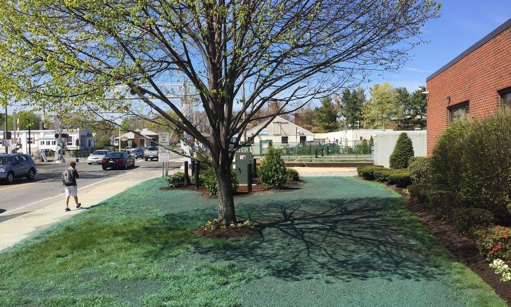 Hydroseeding New Lawns